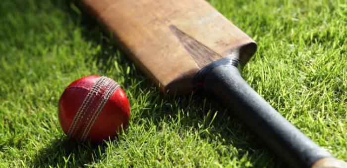 Drug discovery workshop India 2015 - cricket match